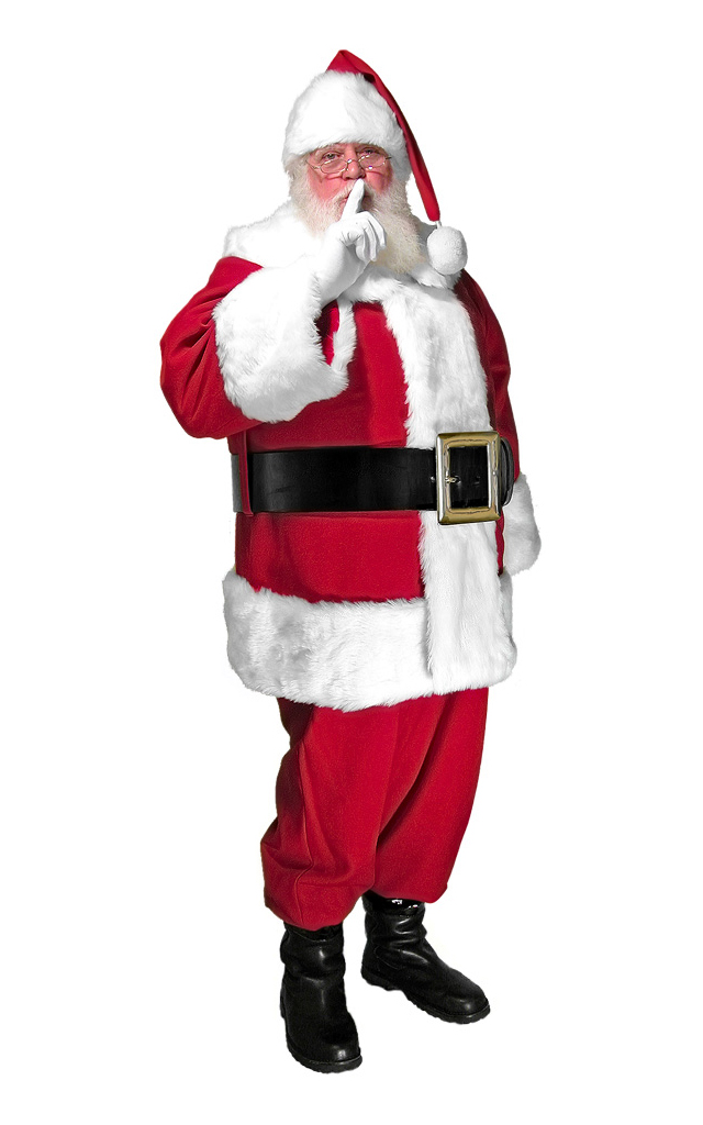 Deluxe Mall Professional Santa Suit
